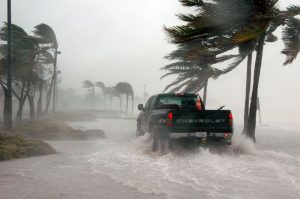 Palm trees blowing in storm rain. PIckup Truck riding through a flood